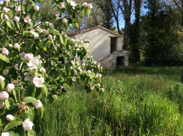 mazet-printemps